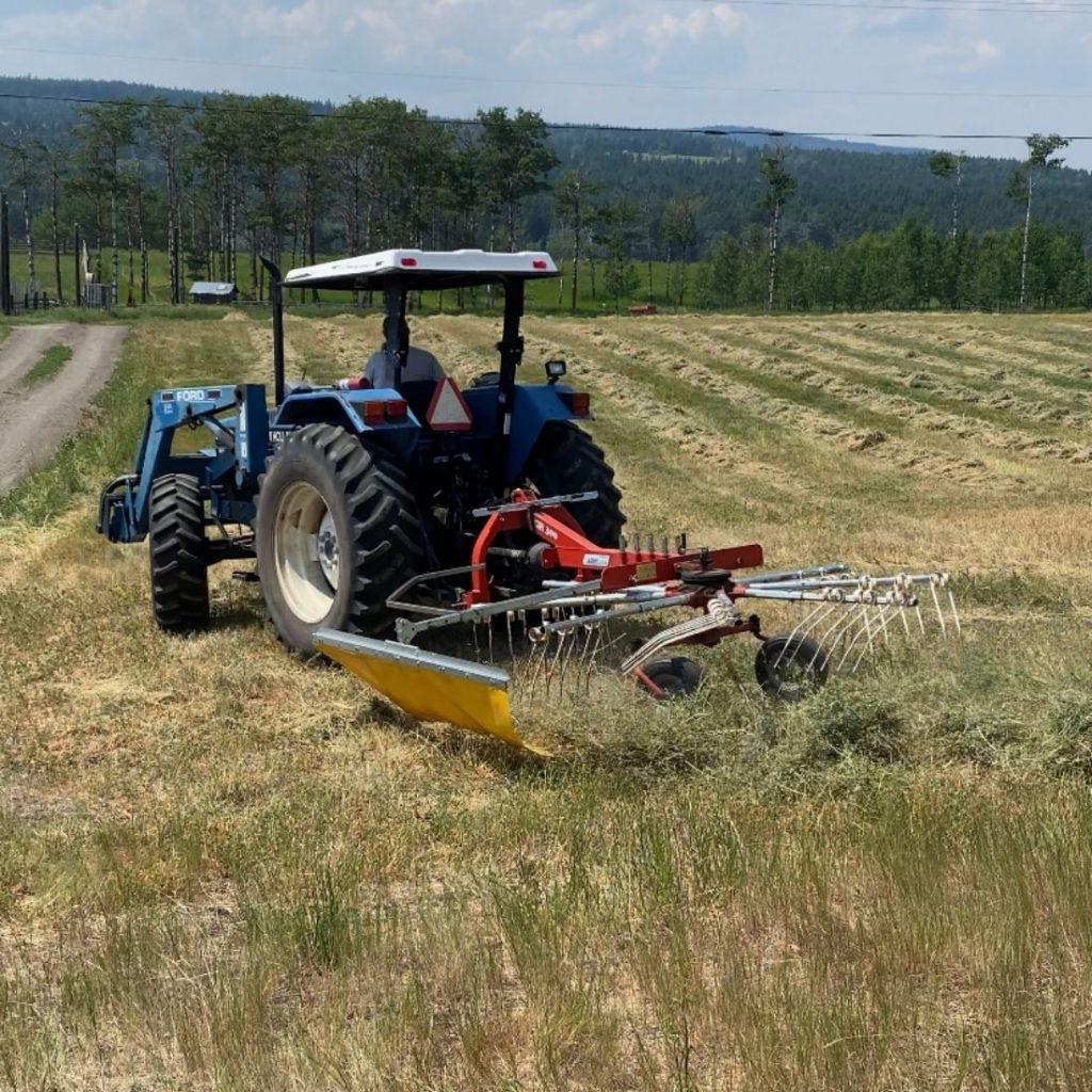 Raking Hay with Tractor and Rake